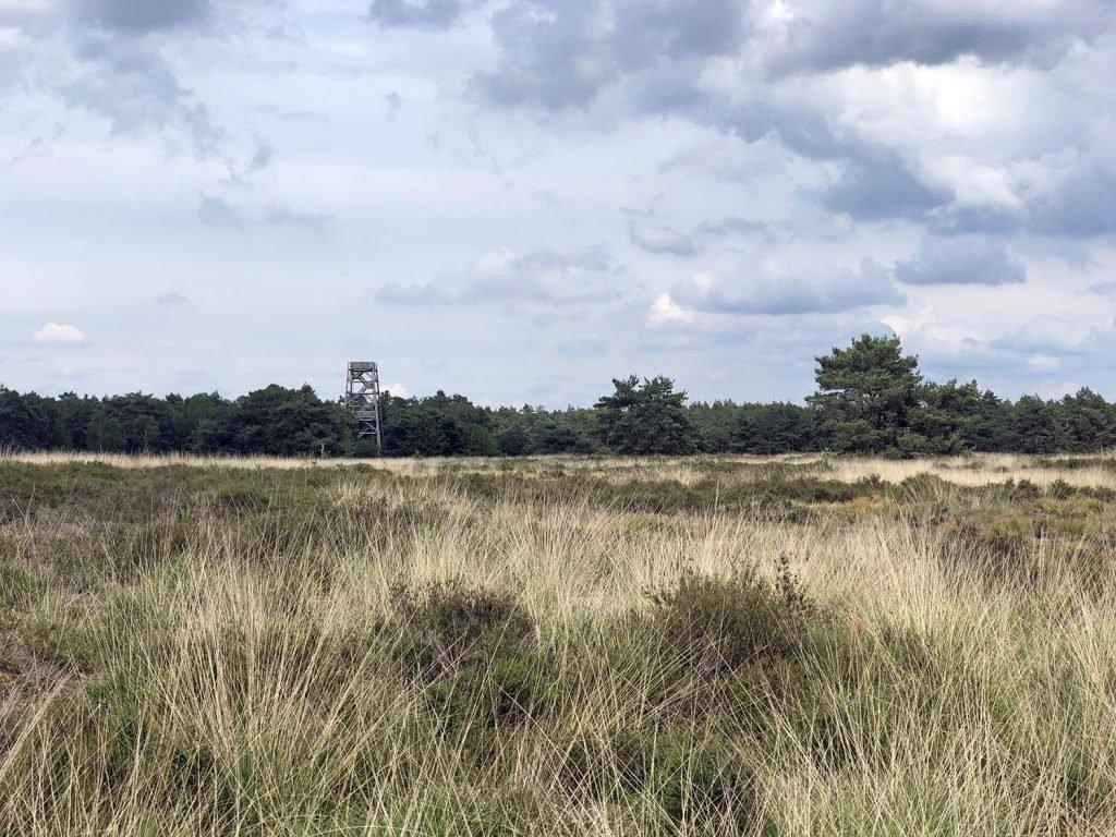 De Stakenberg uitkijktoren op de Elspeter Heide