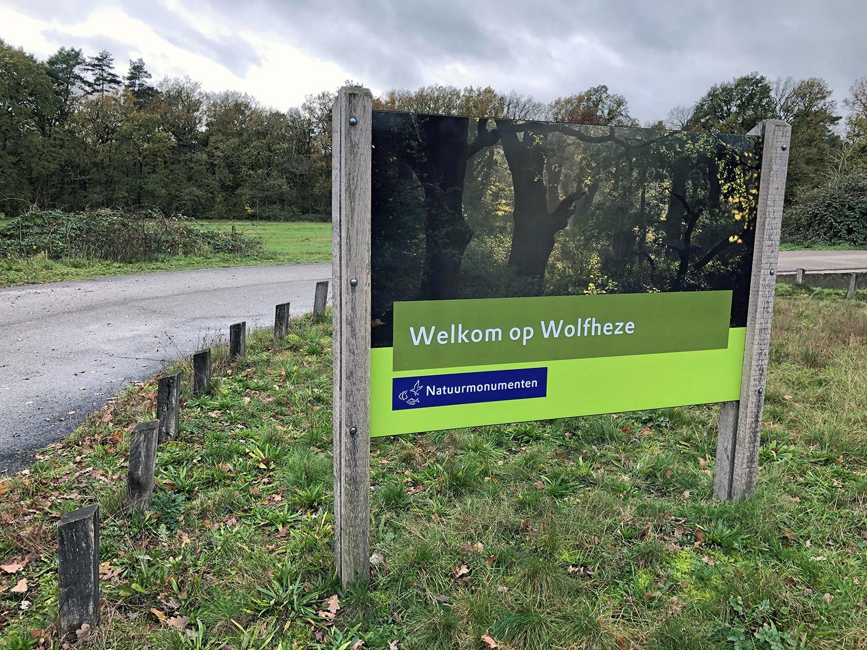 Wandelen in Wolfheze