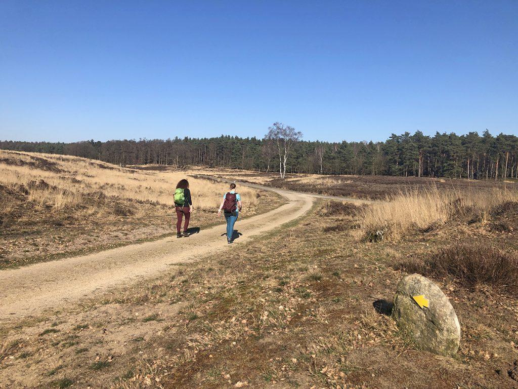 De gele zwerfkeien route vanuit Landal Coldenhove