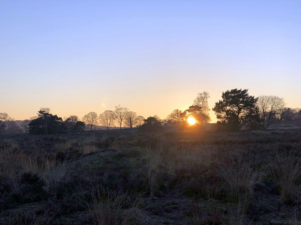 Zonsondergang op een kwartiertje lopen vanaf het park Landal Coldenhove