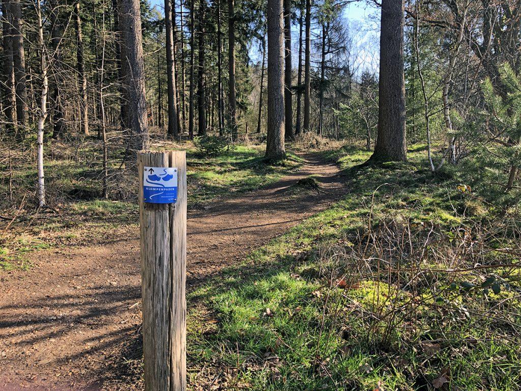 Een van de leukste Klompenpaden op de Veluwe: het Molenbeeksepad