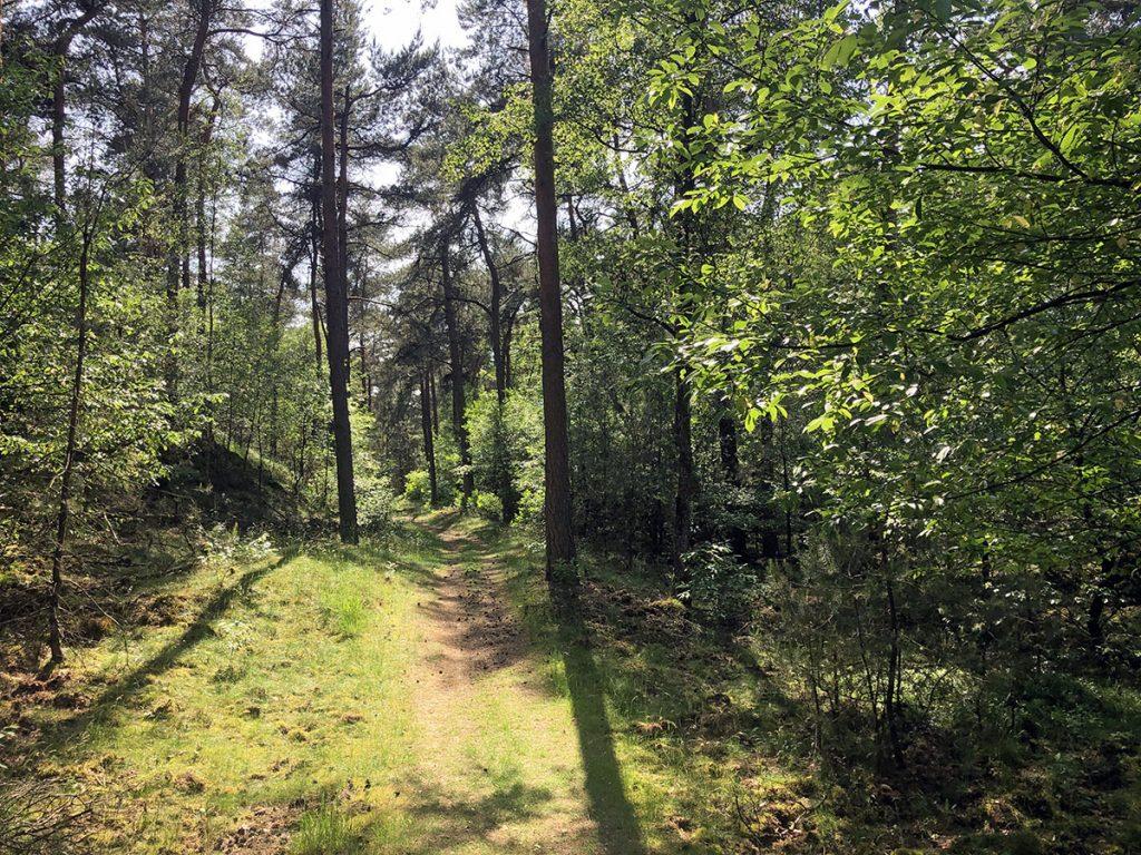 Boswachterij Kootwijk