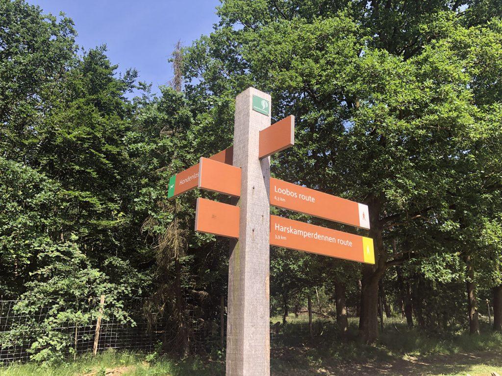 Harskamperdennen en Loosbos wandelroute Kootwijk