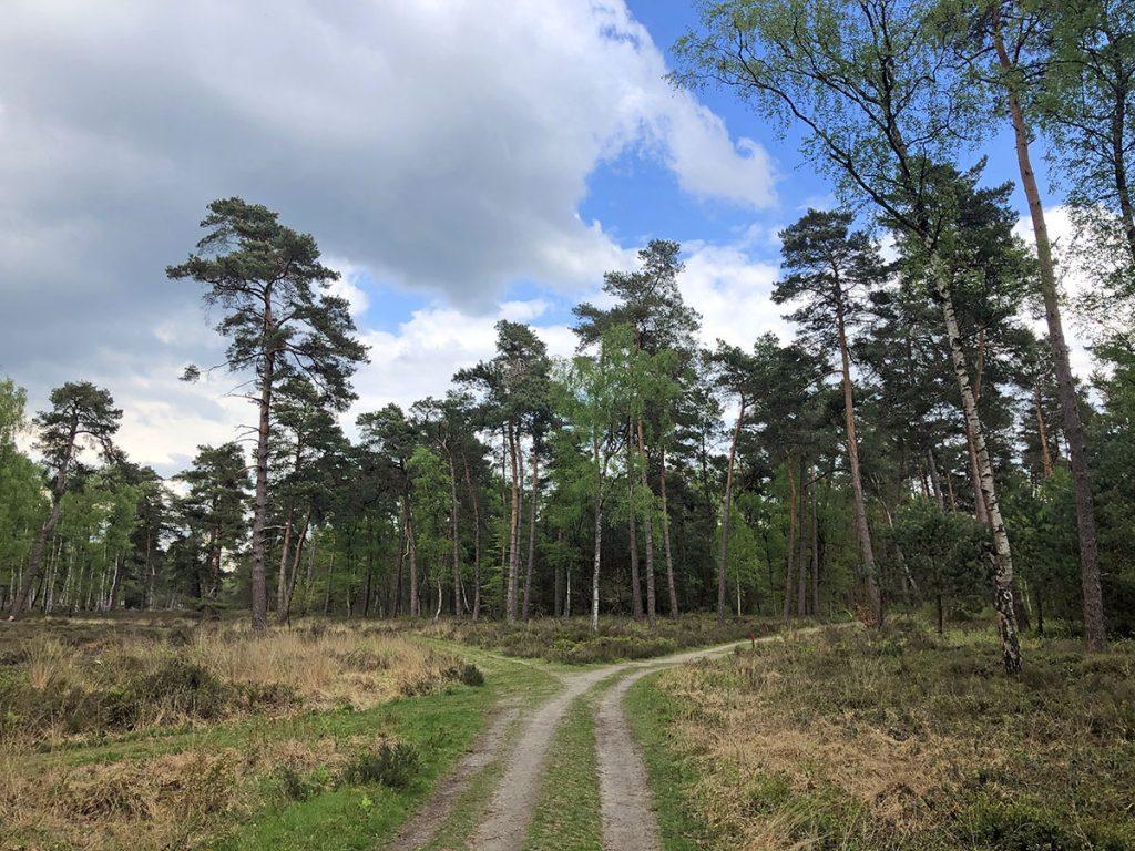 Paleispark Het Loo rode wandelroute wandelroutes in apeldoorn